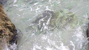 海的基于,海滩的基于 股票录像