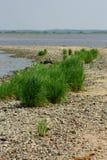 海的岩石岸 图库摄影
