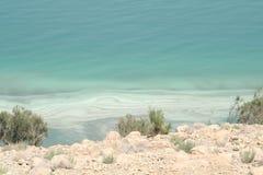 死海的岸 免版税库存图片