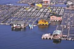 海的工作者 免版税库存图片