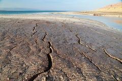 死海的干燥 免版税图库摄影