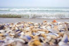 从黑海的明信片 库存照片