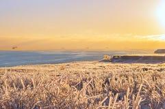 海的海岸在冬天 库存照片