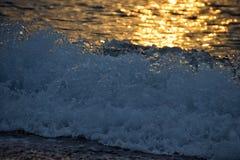 海的爱 库存照片