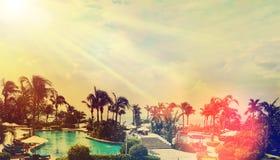 海的美丽的景色有棕榈树和游泳池机智的 免版税库存图片