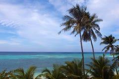 海的美好的绿松石视图有棕榈树的 库存照片