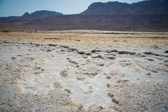 死海的视图 免版税库存图片