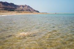 死海的视图 免版税库存照片