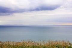 海的陡峭的象草的岸 免版税图库摄影