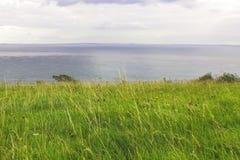 海的陡峭的象草的岸 免版税库存照片