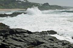 海的雍容 库存照片