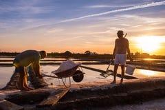 海盐的提取在阿威罗,葡萄牙 免版税库存照片