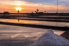 海盐的提取在阿威罗,葡萄牙 免版税库存图片