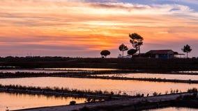 海盐的提取在阿威罗,葡萄牙 库存照片