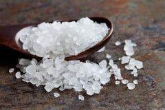 海盐调味品宏指令视图 自然矿物调味料食品防腐剂,盐氯化钠白色水晶 库存照片