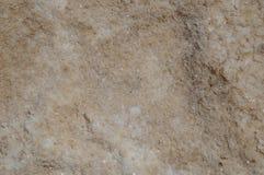 海盐闪耀的水晶  图库摄影