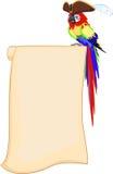 海盗鹦鹉和纸卷 免版税库存图片