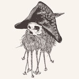 海盗头骨的例证有胡子的 库存图片