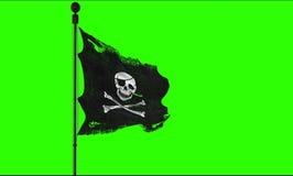 海盗头骨的被剥去的泪花难看的东西老织品纹理沙文主义情绪在风,白棉布起重器在色度钥匙绿色scree的海盗标志 免版税库存图片