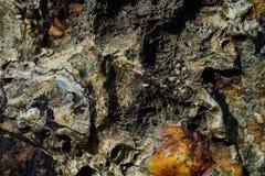 海石头纹理与铁锈的 免版税库存照片