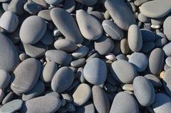 海石头 库存照片