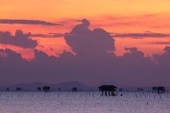 海种田在南泰国的,暮色天空背景 免版税库存图片
