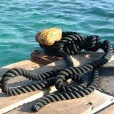 海绳索的细节 库存照片