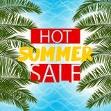 海花费的绿色棕榈叶热的夏天销售 免版税库存图片