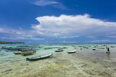 海草农夫在努沙Lembongan,处理每日海藻的巴厘岛 免版税库存图片