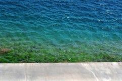 海藻五颜六色的被装载的水 库存照片