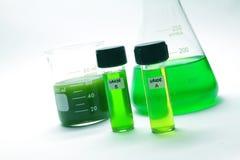 海藻生物燃料 免版税库存图片