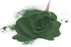 海藻粉末 免版税库存照片