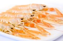 海螯虾盛肉盘scampi 库存照片