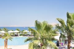 海视图、游泳池和棕榈树,埃及 免版税库存图片