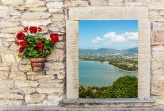 海视图通过与花的开窗口 库存图片