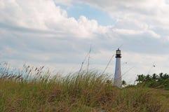 海角佛罗里达灯塔,海滩,植被,比尔Baggs海角佛罗里达国家公园,被保护区,草叶, Key Biscayne 免版税库存照片