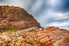 海角前景fynbos好希望本质点预留 免版税图库摄影