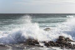 海角圣法兰西斯在南非挥动 免版税图库摄影