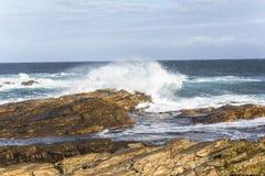 海角圣法兰西斯在南非挥动 库存照片