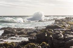 海角圣法兰西斯在南非挥动 免版税库存图片