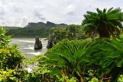 海角在冲绳岛北部的Hedo海岸线  免版税库存图片