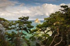 海角在日本海的Gorshkov的杉木海湾 图库摄影