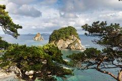 海角在日本海的Gorshkov的杉木海湾 免版税库存图片
