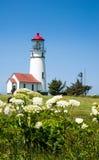 海角有花的布兰科灯塔 免版税图库摄影