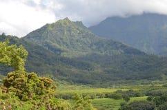 10海角海岛做山全景照片圣地亚哥谷verde 免版税库存照片