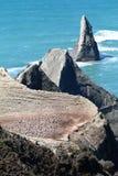 海角绑架者岩石和gannet殖民地 免版税库存照片