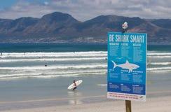 海角鲨鱼城镇警告 免版税库存照片