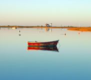 海角chatham在日出的鳕鱼港口 免版税图库摄影
