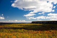 海角Croker峭壁秋天秋天林木环境美化 免版税库存照片