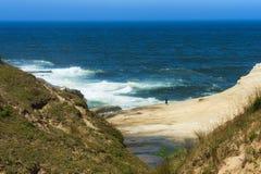 海角Kiwanda峭壁在探索它下使那些变矮小` s岸 库存图片
